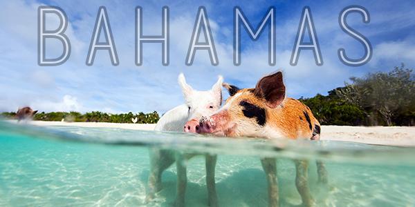 Bahamascover